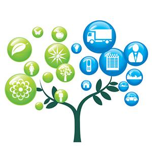 Aplinkos tvarkymas